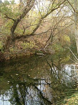 Generalidades sobre el río Escabas