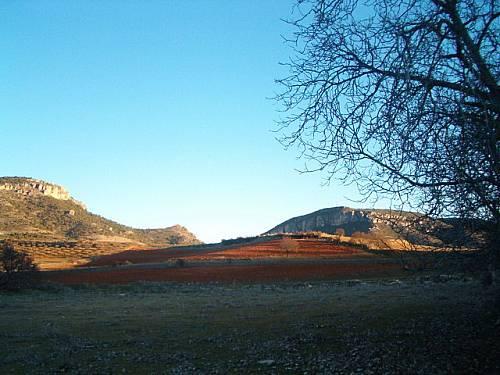 La Sierra de Bascuñana