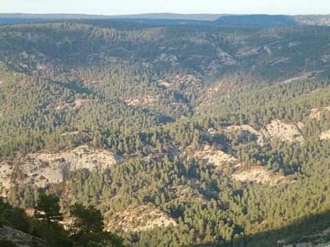 La Serranía Alta de Cuenca - Aproximación al Estudio de la Zona